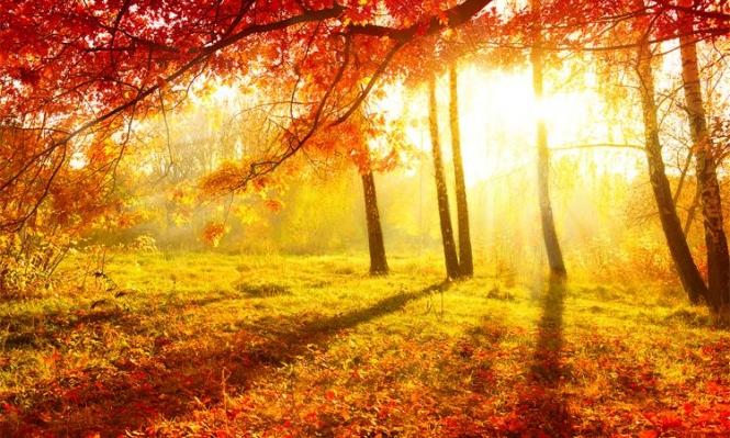 فصل الخريف يبدأ الإثنين المقبل