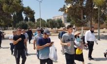 مستوطنون يتقحمون الأقصى والاحتلال يحجبه عن الفلسطينيين