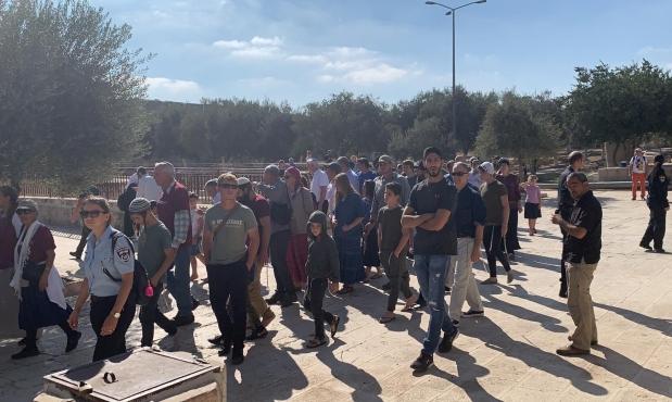 مستوطنون يقتحمون الأقصى وإبعاد 5 فلسطينيين عن باحاته