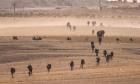 العملية العسكرية التركية في شمال سورية: معارك عنيفة وإردوغان يصر على المواصلة