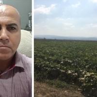 مصادرة 235 دونما من الأراضي الزراعية بكفر مندا