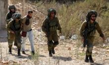 مستوطنون يهاجمون قاطفي الزيتون واعتقالات بالضفة
