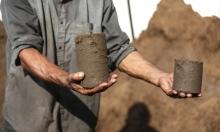 غزة تحوّل جفت الزيتون إلى طاقة بديلة