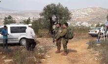 المطالبة بحماية المزارعين الفلسطينيين خلال قطف الزيتون