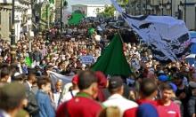 حراك الجزائر يحتفل بعيد ثورة الاستقلال