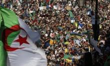 الجزائر: المصادقة على طلبات خمسة مرشحين لانتخابات الرئاسة
