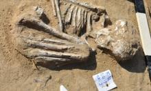 مصر: اكتشاف مقبرة جماعية أثرية في الاسماعيلية