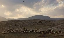 """""""كاحول لافان"""" تكرر تأييدها لفرض """"سيادة"""" إسرائيل بالأغوار"""