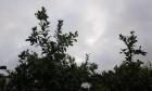 حالة الطقس: غائم جزئيا وأمطار متقطعة في معظم البلاد