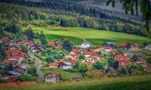 دراسة: المساحات الخضراء تطيل عمر السّاكنين قربها