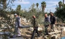 اللد: إنهاء الاستعدادات لمعسكر الرباط