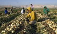 """الاحتلال يقيد دخول الفلسطينيين لأراضيهم في """"منطقة التماس"""""""