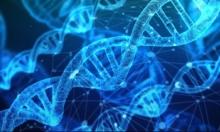 دراسة: الأحماض الوراثية تحدد تصرفات البشر
