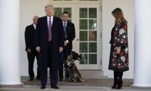 تقرير عزل ترامب سيصدر الأسبوع المقبل