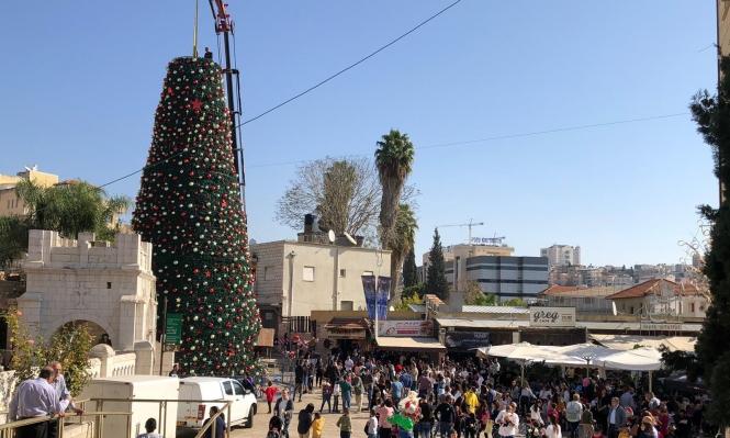 الناصرة تحتفل بنصب أكبر شجرة ميلاد