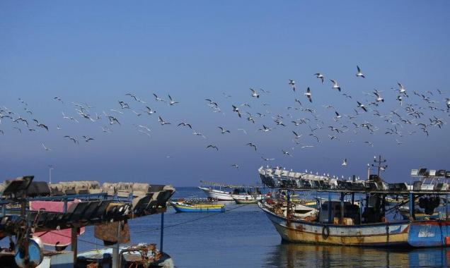 تحالف أسطول الحرية يبحر إلى غزة في صيف 2020