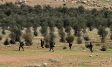 """تحذيرات أمنية إسرائيلية من ضم الأغوار: تهدد اتفاق """"وداي عربة"""""""