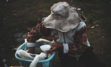 تقرير: نصف مليار شخص يعانون من الجوع في آسيا والمحيط الهادئ