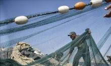 الصيادون: عدم شمل اللوكوس والتونا في قائمة الأسماك المحمية
