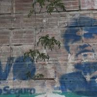 بوليفيا: مذكرة توقيف ضد الرئيس السابق المتهم بالتمرد