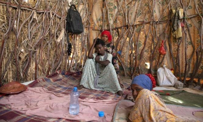 اليمن: انخفاض مستويات انعدام الأمن الغذائي