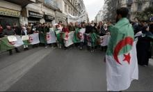 حراك الجزائر في جمعة الـ44 مستمر بالعصيان