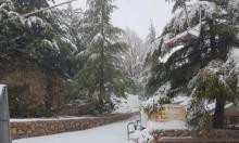 استمرار تساقط الثلوج في جبل الشيخ
