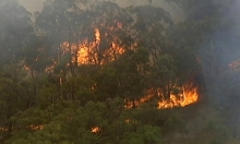 أستراليا: إجلاء عشرات الآلاف من المواطنين جراء حرائق