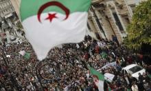 الجزائريون يرفضون الحوار مع تبون