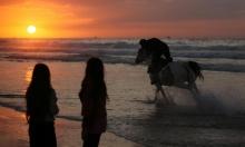خيل وشاطئ.. رقصة جامحة للحياة على شاطئ غزة