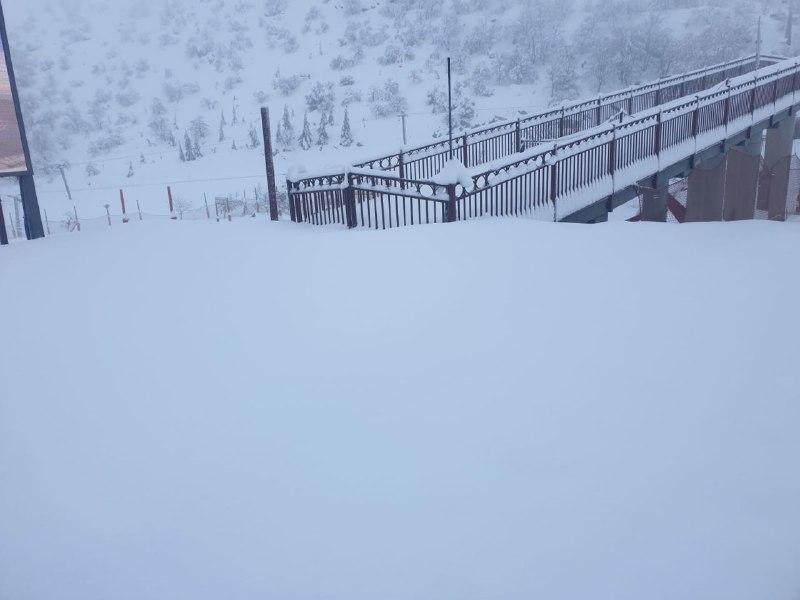 شاهد   استمرار تساقط الثلوج على جبل الشيخ