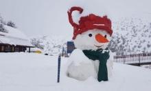 شاهد | استمرار تساقط الثلوج على جبل الشيخ