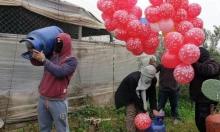 غزة: تهديدات بتكثيف إطلاق البالونات الحارقة إذا تعثرت التهدئة
