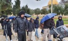 مستوطنون يقتحمون الأقصى والاحتلال يبعد الشيخ صبري عن المسجد