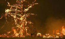 تقرير: عقد الخسائر الاقتصادية الأكبر بسبب الكوارث الطبيعية