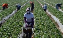 حملة ترامب ضد المهاجرين تخفض الوظائف والأجور الأميركية