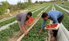إسرائيل لم تبلغ السلطة الفلسطينية بوقف استيراد المنتجات الزراعية