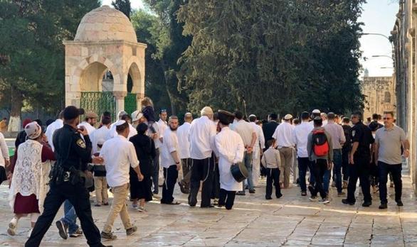 اقتحام الأقصى واعتقال فلسطينيين في القدس المحتلة