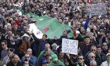 الحراك الجزائري يقترب من عامه الأول.. والحشد مستمر