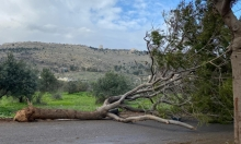 الأجواء العاصفة: أضرار وانقطاع للتيار الكهربائي قبيل منخفض الأحد