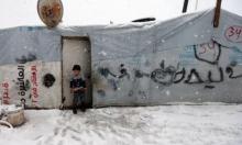 عرسال: معاناة مستمرة للاجئين السوريين من البرد القارس