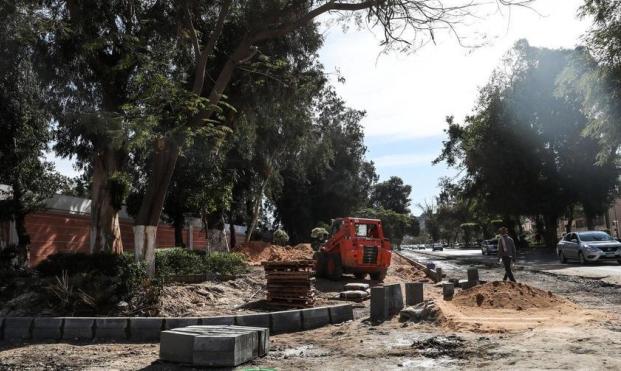 العاصمة الإدارية تقضي على أشجار مصر الجديدة