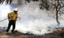 حرائق أستراليا: هل ينقذ الأصلانيون البيئة؟