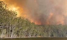 ثُلث الكائنات الحية مُهددة بالانقراض بسبب التغير المناخي