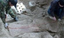 اكتشاف نوع  ديناصورات جديد عاش قبل 90 مليون سنة