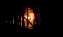 بعد 6 شهور من اندلاعها.. السيطرة على الحرائق في أستراليا