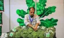 غزّة: مبادرة توعويّة لأهمية المنتجات الزراعية الآمنة