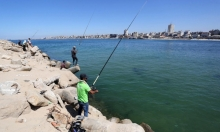 غزة: توسيع منطقة الصيد وإصدار 2000 تصريح تجاري