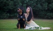 دراسة: الكلاب ليست ذكية بل مُحبة