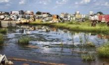 إيطاليا: عقد اجتماع لحماية التنوع البيولوجي في روما